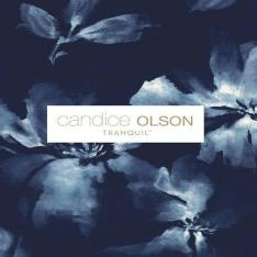 Candice Olson Tranquil
