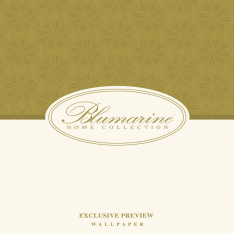 Blumarine Exclusive Preview